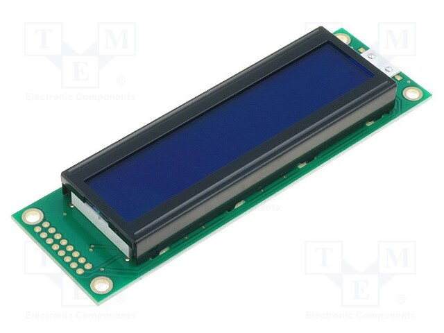 RAYSTAR OPTRONICS RC2002A-BIG-ESV - Display: LCD